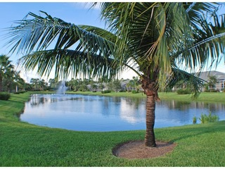 Naples Real Estate - Community IBIS COVE Photo 4