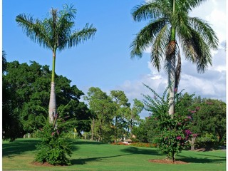 Naples Real Estate - Community LELY COUNTRY CLUB Photo 3