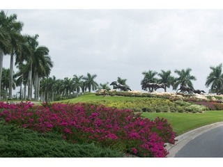 Naples Real Estate - Community LELY RESORT Photo 6