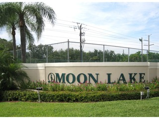 Naples Real Estate - Community MOON LAKE Photo 1