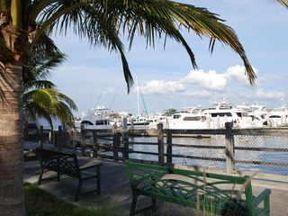 Naples Real Estate - Community OLDE NAPLES SEAPORT Photo 3