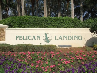 Naples Real Estate - PELICAN LANDING Main Community Photo