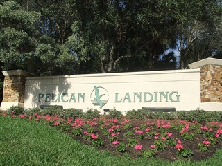Naples Real Estate - Community PELICAN LANDING Photo 2