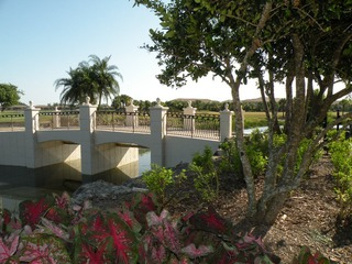 Naples Real Estate - Community VASARI Photo 4