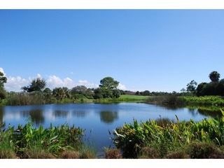 Naples Real Estate - Community COLLIERS RESERVE Photo 4